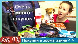Покупки из зоомагазина для собаки - уход за собакой с Elli Di.(, 2016-03-10T11:32:05.000Z)