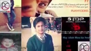 Tum Hum ko Yaad Rakhna (Peshawar Attack)