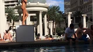 Live from Caesars Palace Blackjack Pool in Las Vegas