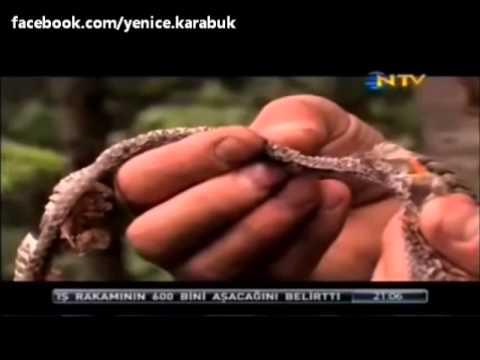 Doğada Tek Başına - Yenice Karabük ( NTV - Bölüm 1)