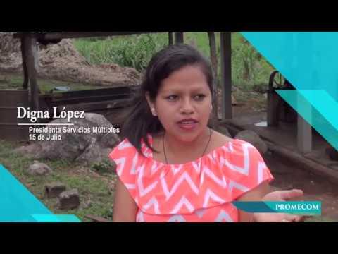 Historias de Éxito Proyecto PROMECOM