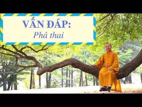 Vấn đáp: Phật học ứng dụng 04: Nỗi đau phá thai (18/09/2011) Thích Nhật Từ