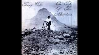 Tracy Cole - Silver Spaceship