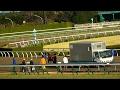 コパノリスボン、競争中止で馬運車へ。現地映像、京都競馬場