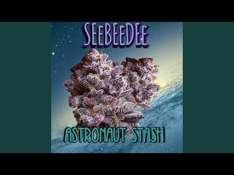 Astronaut Stash