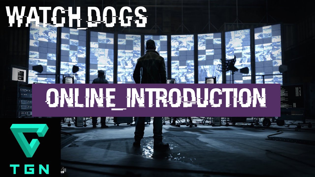Can T Play Online On Watch Dogs