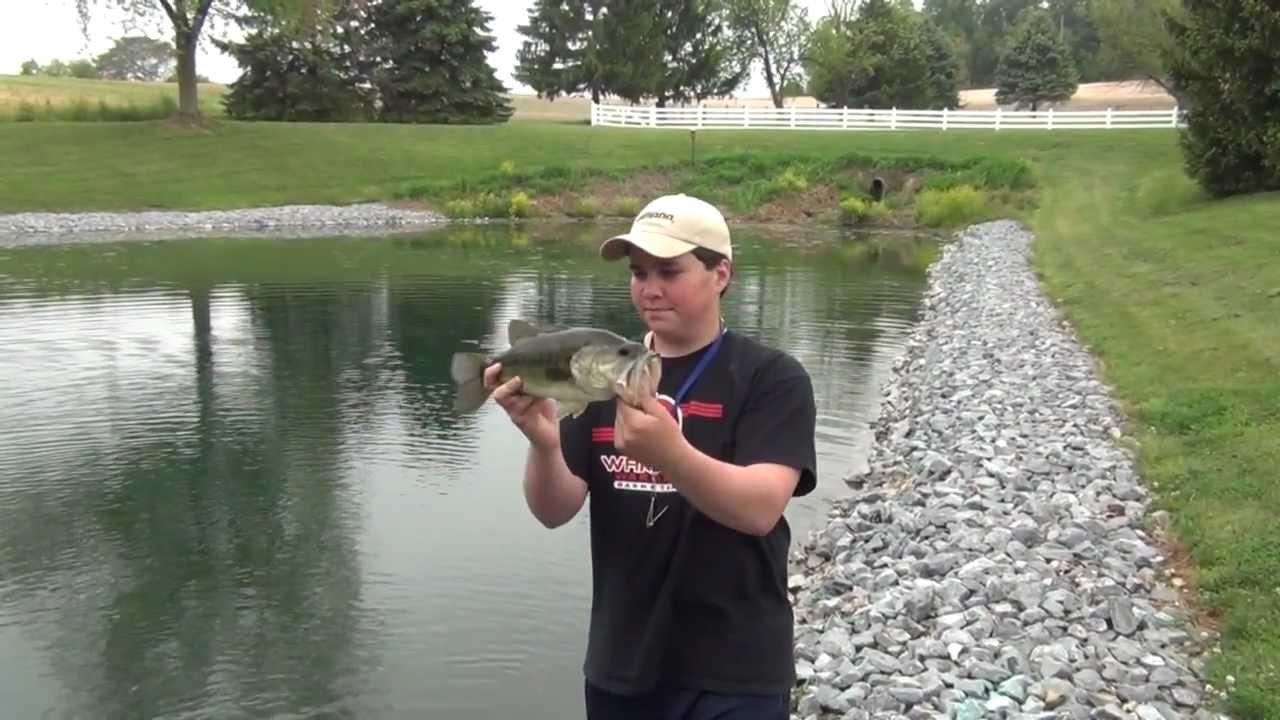 Pond Bass Fishing Pennsylvania 2012 #2