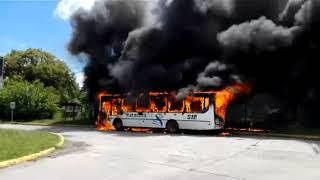 Se incendió un colectivo de la línea 510 (COMPLETO)