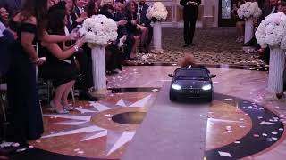Dog Drives Down Wedding Aisle in Tiny Toy Car - 1037112