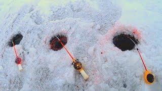 Рыбалка зимой на удочки поставушки и как ловят спортсмены Ловля подлещика со льда Рыбалка 2020