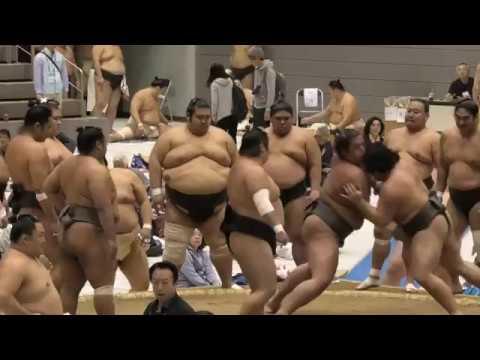 動画 大相撲 秋 場所