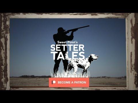 Setter Tales Promo