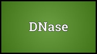 DNase Meaning