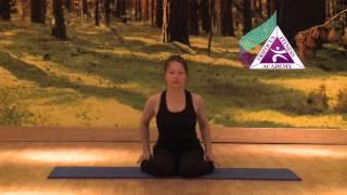 Yoga - Virasana (Hero Pose)