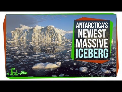 Should You Worry About Antarctica's New, Massive Iceberg?