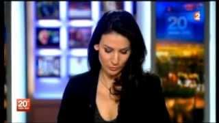 BUG ÉPIQUE lors du JT de 20h de France 2 du 25 novembre 2012 thumbnail