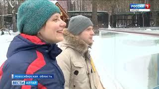 В новосибирском зоопарке родились детёныши белых медведей