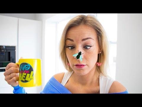 Gaby And Alex Vs Pesky Flies. Funny Story For Kids
