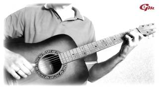 В мире животных. На гитаре. Урок 1