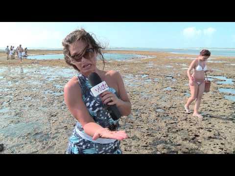 Pernambuco - Turismo