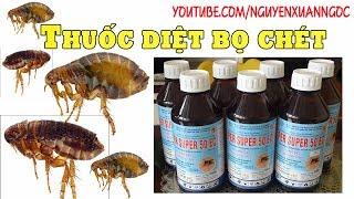 Thuốc diệt bọ chét - Hướng dẫn sử dụng thuốc diệt bọ chét HIỆU QUẢ NHẤT