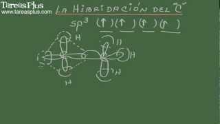 Hibridación del átomo de carbono