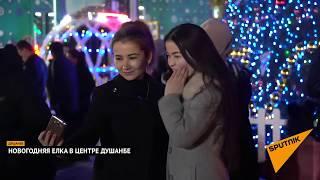 Что жители Душанбе думают о новогодней елке