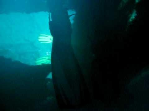 Exiting the Wreck: SS President Coolidge in Espiritu Santo, Vanuatu