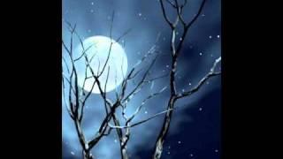 Nishi Kabbo  --  Fav Song --   Habib Wahid