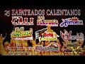 20 Zapateados Calentanos Chingones   Dj Leo Lahm