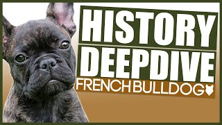 FRENCH BULLDOG HISTORY DEEPDIVE