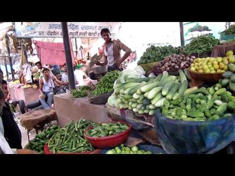 Jaipur India Food Market July 2010 Pink City