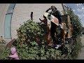 Longboard Dancing - John the Wild Boar - Demo Vol. 04 SONG ZHUANG & FREEDOM