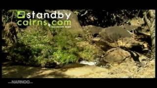 TropicHorizon VIDEO Thumbnail