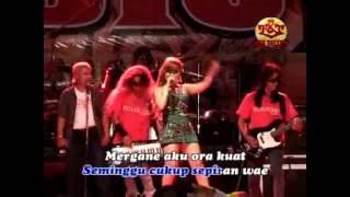 Wedhus - Ikif Kawashima OM Ardista - Dangdut Koplo Mp3