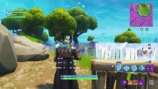Victory Royale with my fiance Linn Anett!