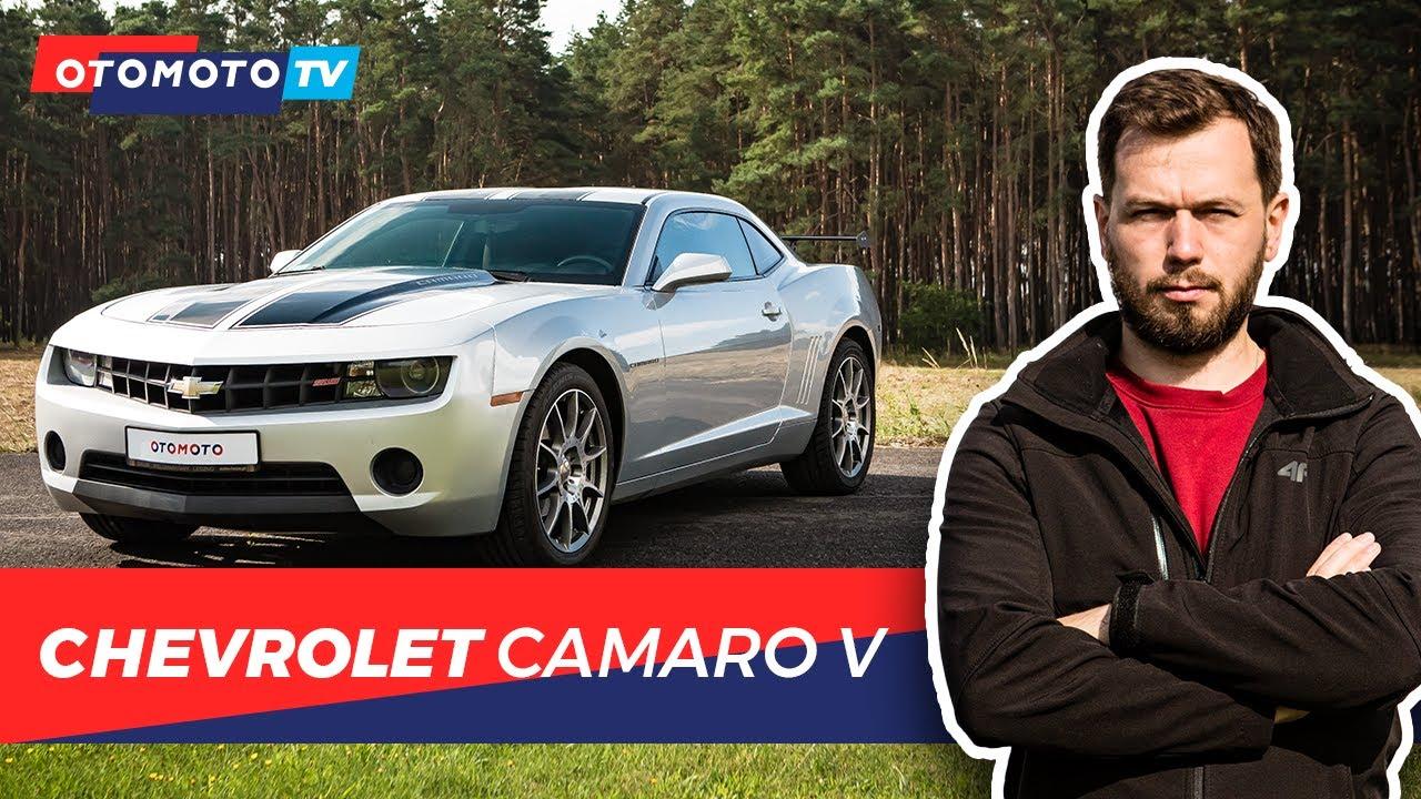 Chevrolet Camaro V - Dobry kumpel   Test OTOMOTO TV