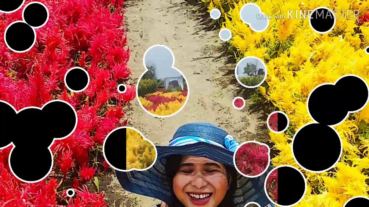 Rekomendasi Spot Foto Murmer Hanya 8000 Puas Selfi Di Romantic