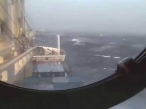 OLIVER TELAC - Odlomci sa dalekih mora
