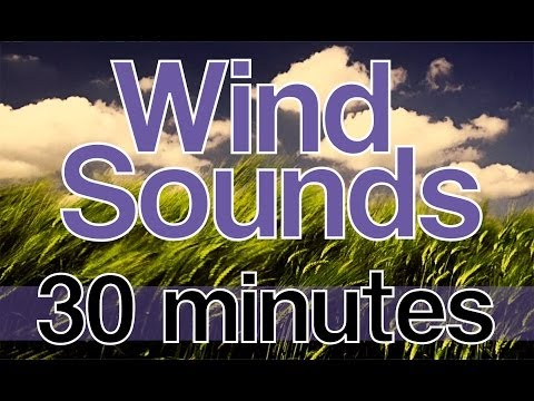 "Relaxing Wind Sounds 30 Minutes HD 1080p Natural Sounds without Music ""Wind Noise"""