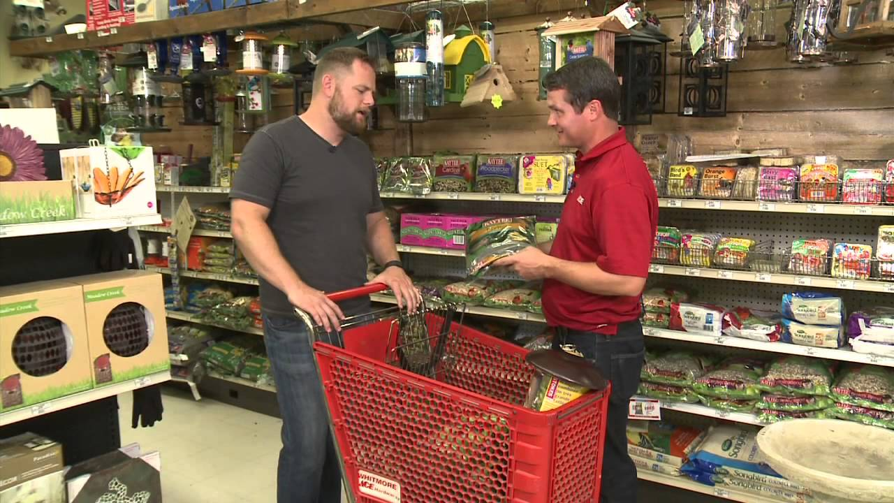 setting up bird feeders with ace hardware youtube