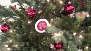 Merry Christmas from Rachel's English!
