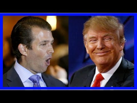 'Ambassador to the unhinged underbelly': Don Jr exposed as Trump's liaison to the fanatical fringe