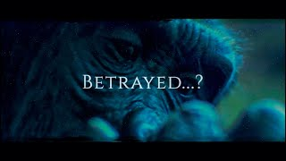 Betrayed...?