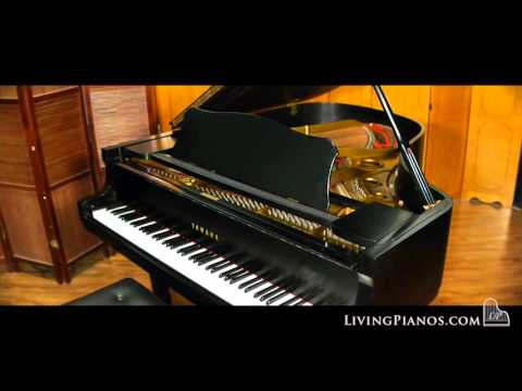 Yamaha C3 Conservatory Grand Piano for Sale - Online Piano Store
