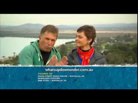 Discovery Parks South Australia on Whats Up Down Under