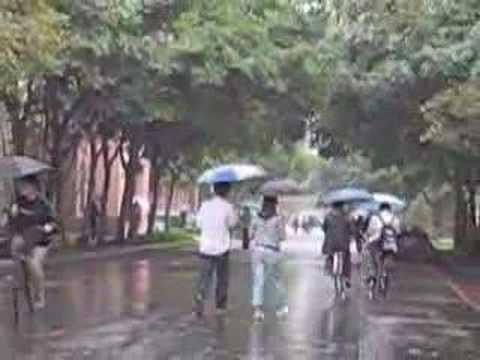 Rainy on the campus of Taipei University
