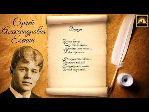"""Стихотворение С.А. Есенин """"Берёза"""" (Стихи Русских Поэтов) Аудио Стихи Слушать Онлайн"""