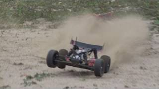 2WD Electric Brushless Buggy