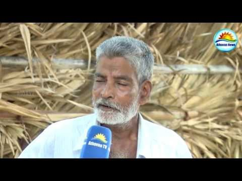 Jaffna Water Issue - Thisaigal Documentary